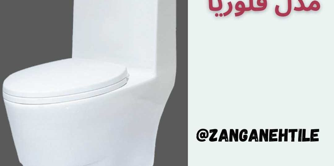 بهترین مدل توالت فرنگی مدل فلوریا چینی کرد